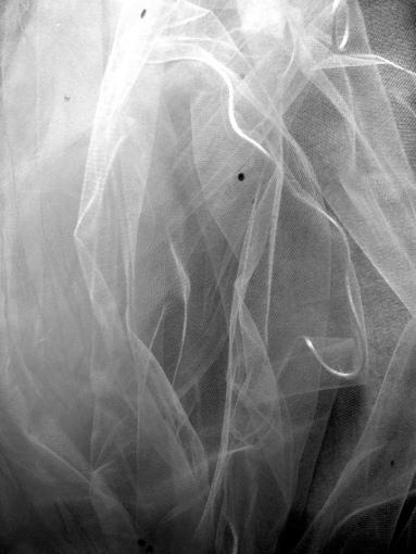 impending-veil-1499173-1279x1705